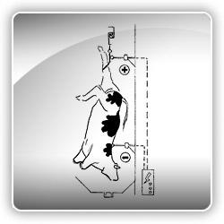 Sistema de estimulación eléctrica